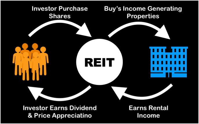 REIT India - 1