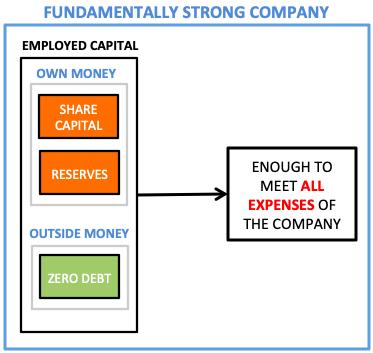 Fundamentally Strong Stocks - Employed Capital ZERO DEBT